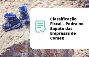 Classificação Fiscal – Pedra no Sapato das Empresas de Comex